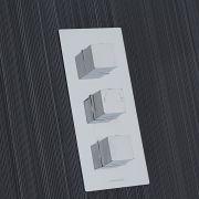 Kubix Concealed 2 Outlet Triple Thermostatic Shower Valve