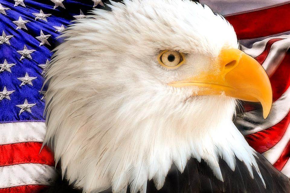 4th July Eagle